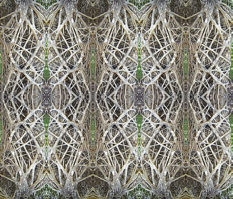 Darwin_136 fabric by lindast on Spoonflower - custom fabric