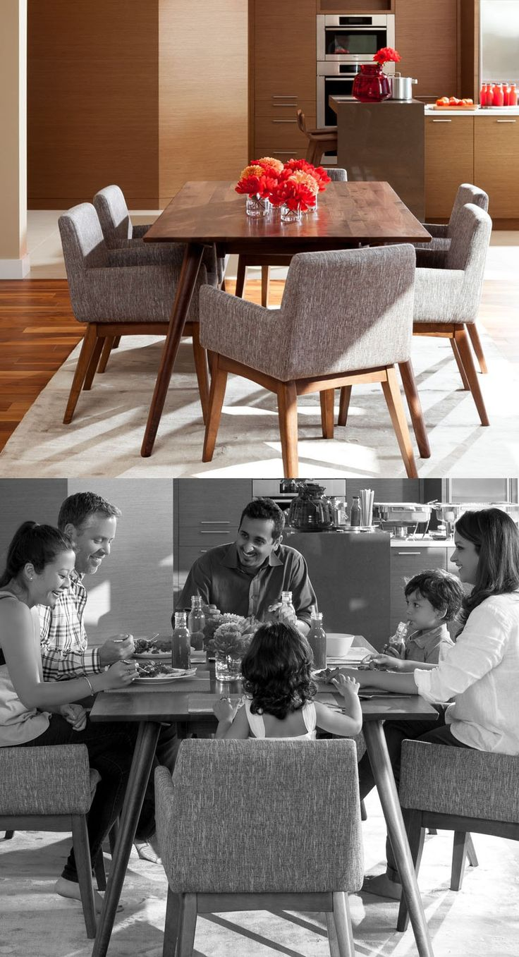 2 X Gray Dining Chair In Walnut Wood Finish | Article Chanel Modern  Furniture