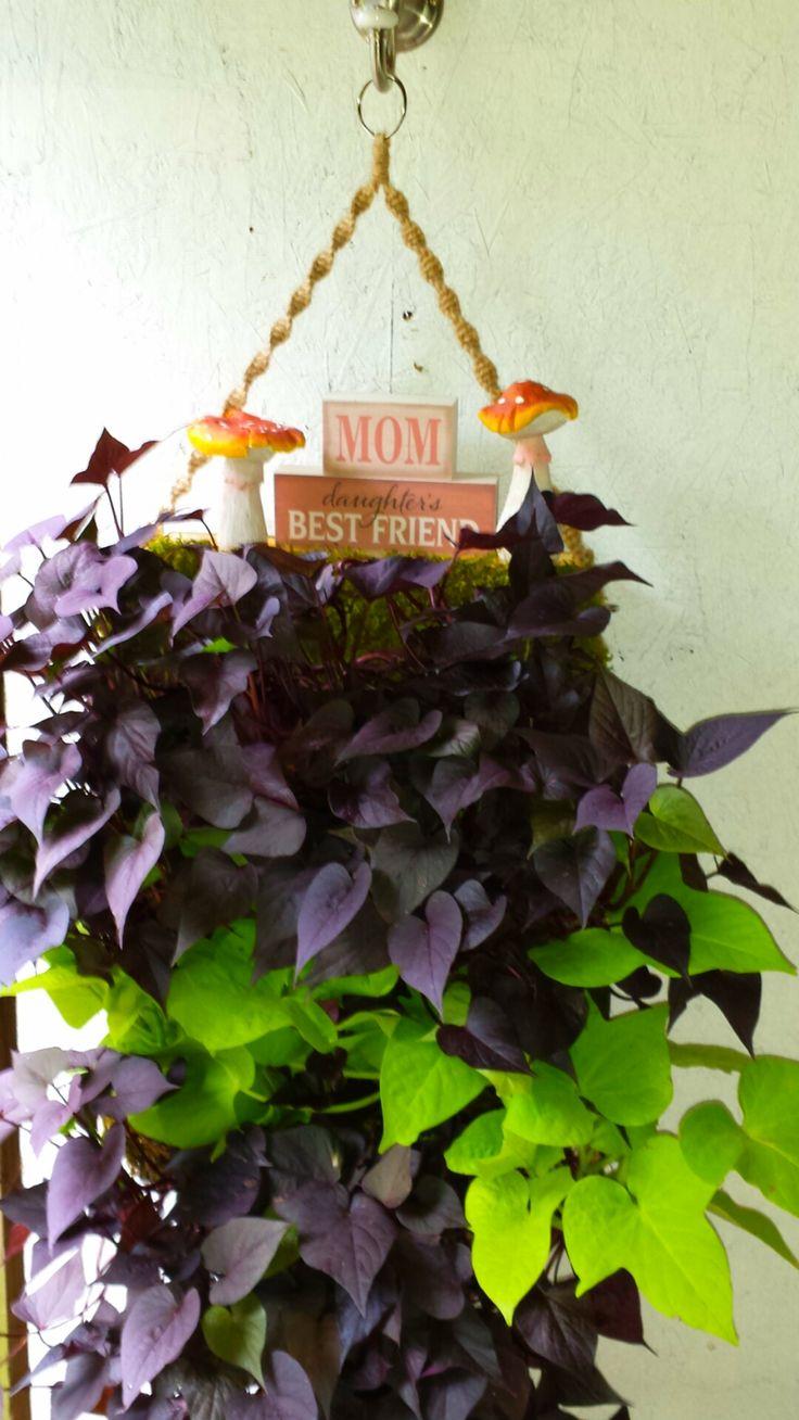 Some garden art I used to spruce up the sweet potato vine hanger I made!