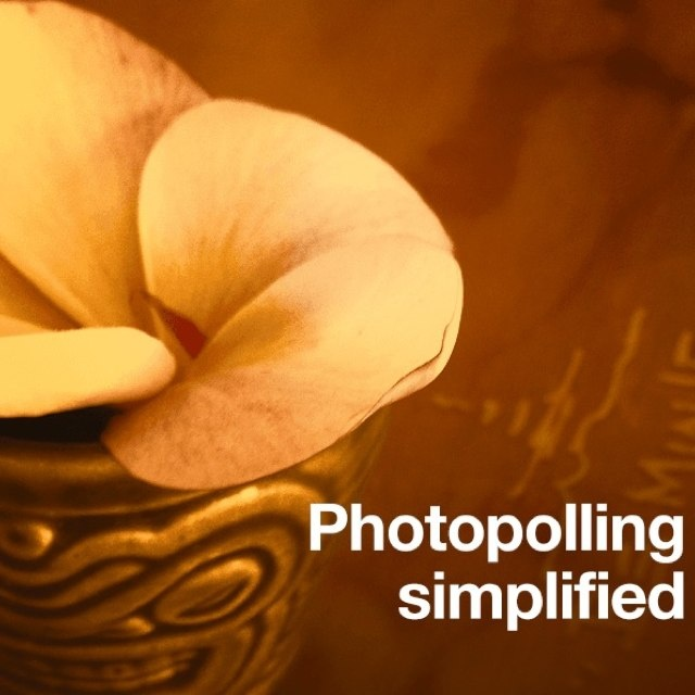 Photopoll: Special Shout out to Photopoll Team , great app guys