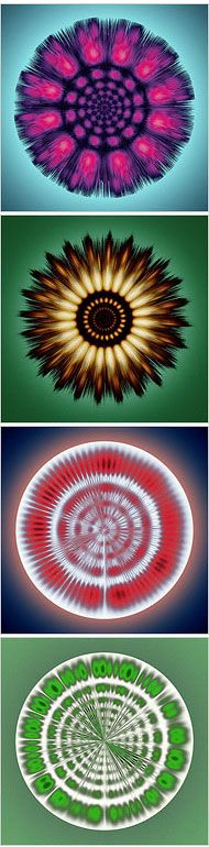 Subtle Math Turns Songs of Whales Into Kaleidoscopic Images - New York Times
