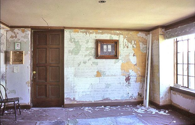 """""""The Yellow Wallpaper"""" a short story, can be found online"""