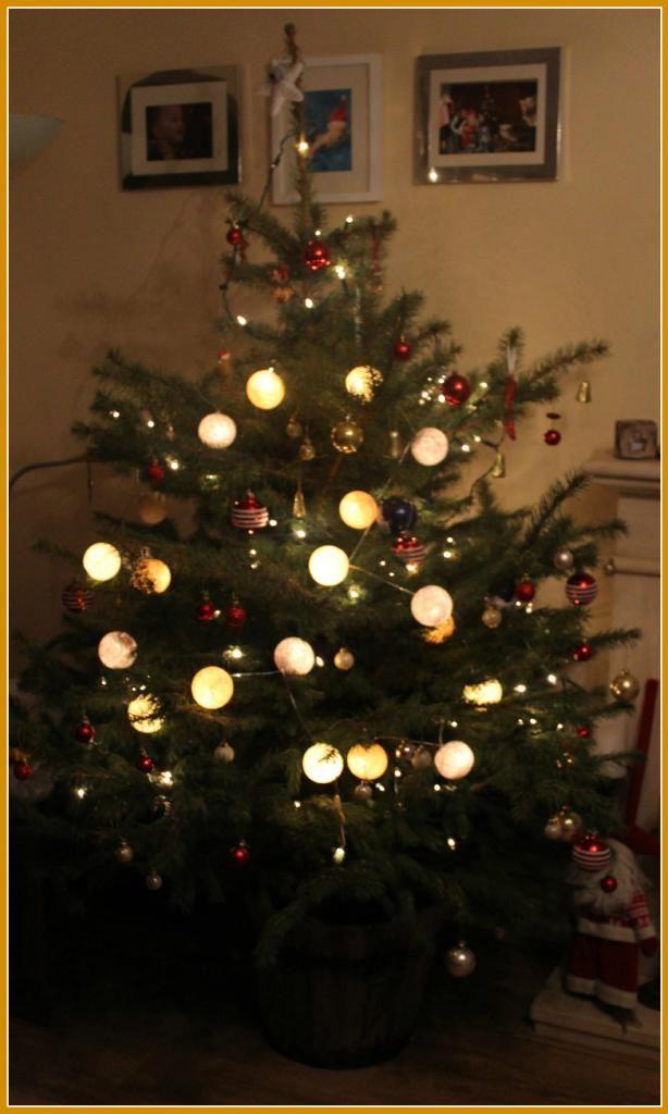 Cottonlights på juletreet!  Kjøp cottonlights her - gratis frakt: http://www.multitrend.no/Cottonlights-lyslenker/cat-c/c1000042