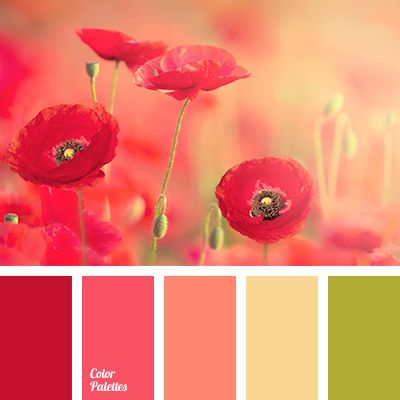 The combination of all shades of red and pink with olive green is the choice of strong, self-motivated people with excellent taste. By adjusting the propor.