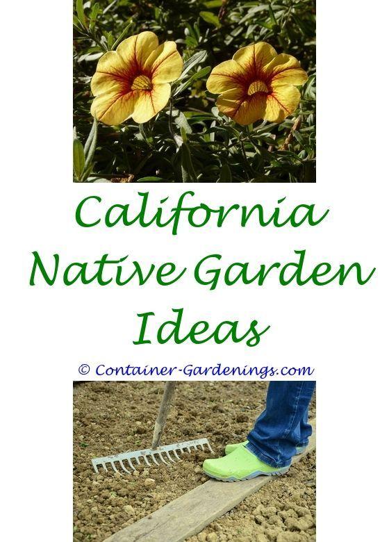 Lovely Rock Garden Pictures Ideas Plans Examples   Gift Ideas For A Vegetable  Gardener.fern Garden