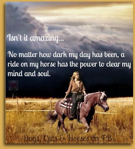 ♥ Beyond true...I may not have a horse to ride yet but just being around them...heaven!!