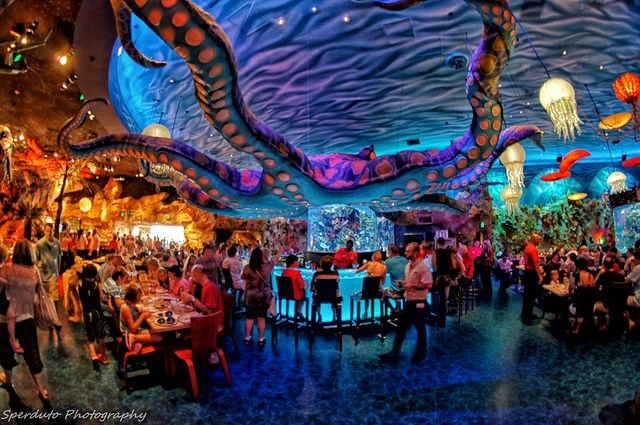 T-Rex Restaurant Fish eye   Flickr - Photo Sharing! SOOOO good!!! Downtown Disney at Disney World