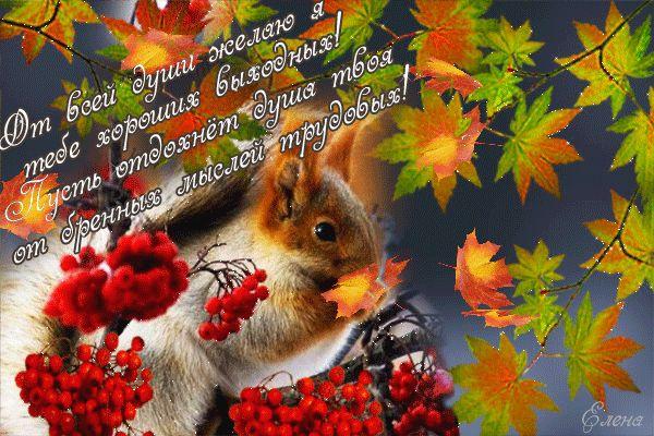 Открытка пожелания - Хороших выходных! - Белка и падающие листья