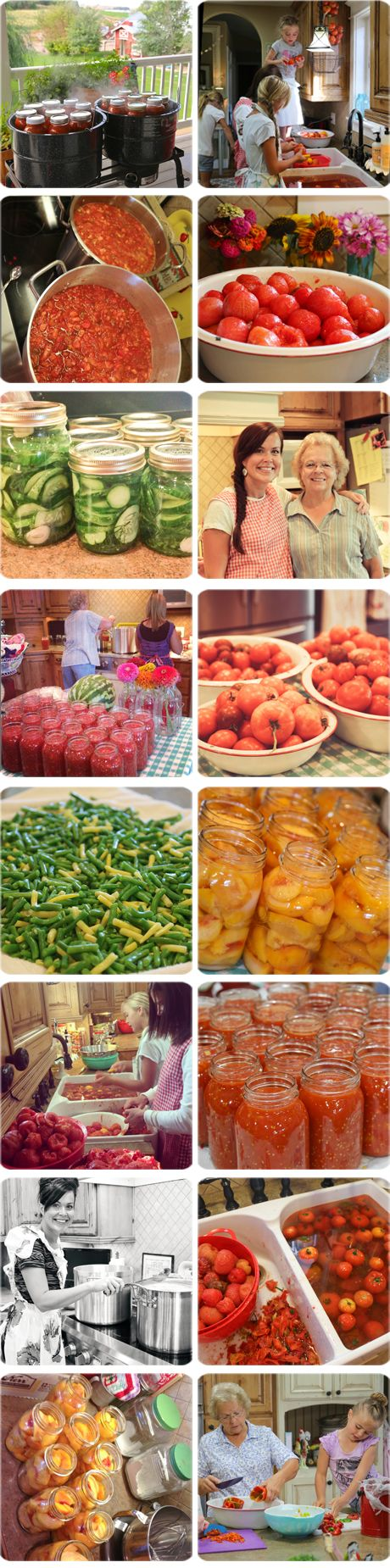 The BEST website for gardening/canning!  My Crazy Life As A Farmer's Wife is one of my all time favorite blog reads!