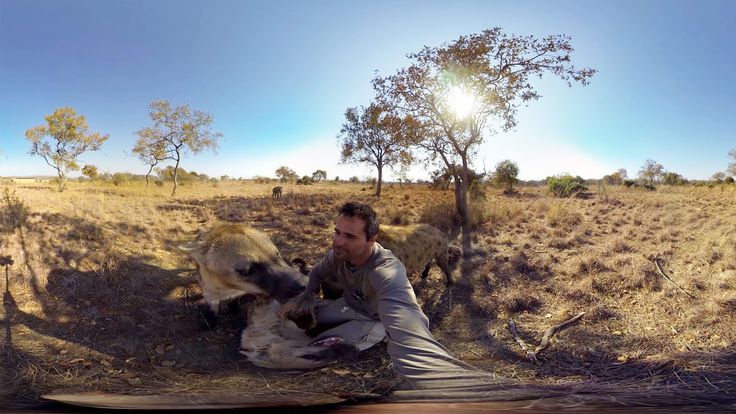 GoPro Spherical: Hyenas Wrestling With Kevin Richardson