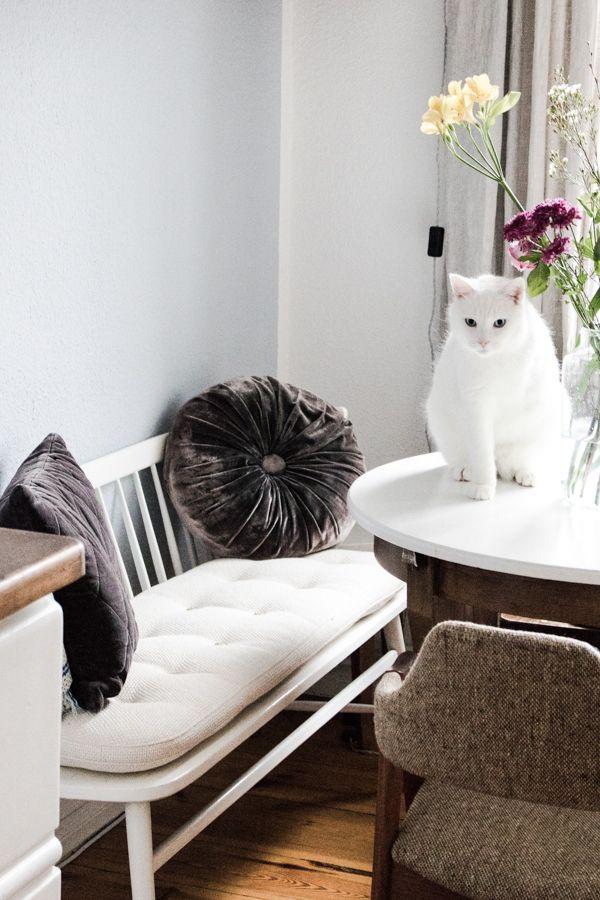 Neue Kategorie: Ab jetzt gibt es  ab und an eine Homestory von Katzenbesitzern. Schöner Wohnen mit Katzen quasi und den Anfang macht Ani von Lieblingsmadchen.