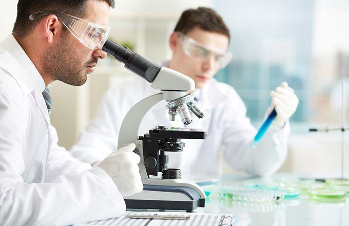 Should You Avoid Biotech Stocks Right Now? (IBB, BXI) (LABD,IBB,XBI)