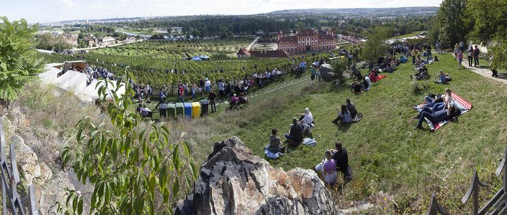 Wine harvest festival in Prague Botanical garden