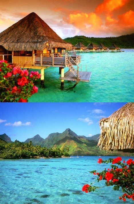 Dream Honeymoon Destination - Bora Bora.