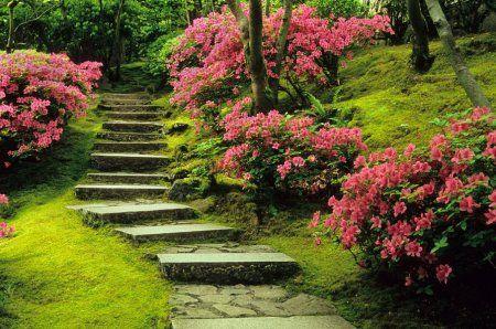 Уголок Японии в российском саду