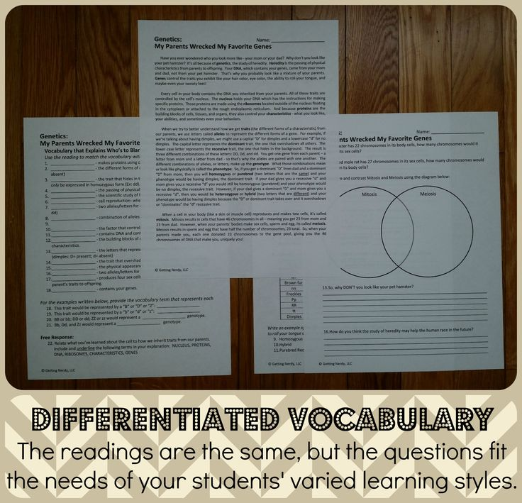103 best biology images on pinterest life science physical differentiate your vocabulary lesson and reach students through their varied learning styles blog post about fandeluxe Images