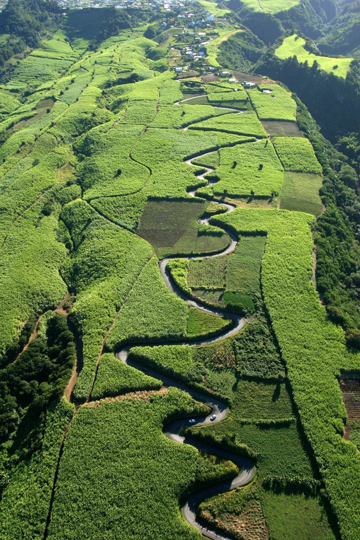 Ile de La Réunion, route sinueuse à travers les plantations de canne à sucre avec #sucrelaperruche