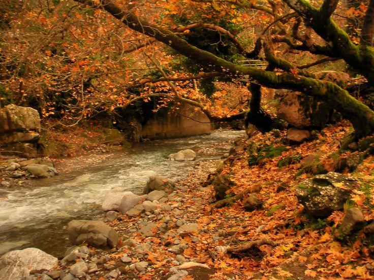 https://flic.kr/p/jEQmVH | Arcadia - Touthoas river (2) | Touthoas river near to Phouskari and Lefkochori which is a mountain village in the municipal unit of Lagkadia in Arcadia, Greece. It is 5 km west of Lagkadia.