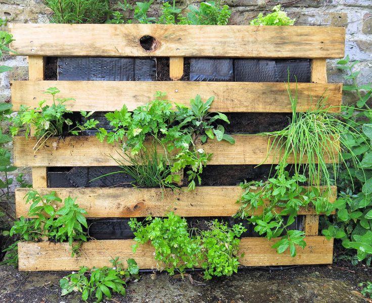 groene muur hangplanten - Google Search