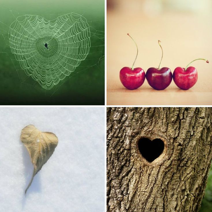 Found Hearts (3)