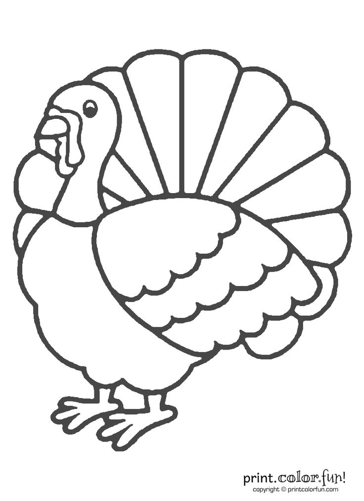 Thanksgiving turkey coloring Print. Color. Fun! Free
