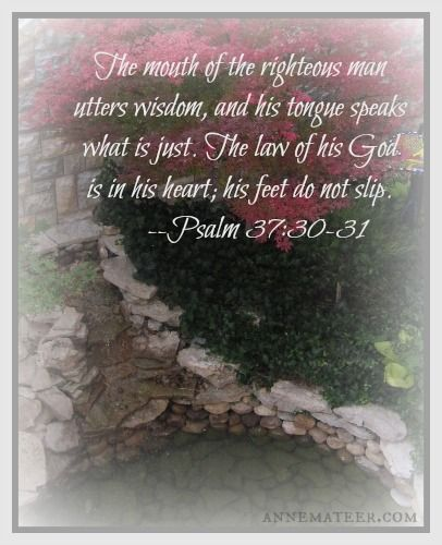 Psalm 37:30-31 (KJV) ~~  The mouth of the righteous speaketh wisdom, and his tongue talketh of judgment. The law of his God is in his heart; none of his steps shall slide.