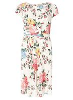 Womens **Billie & Blossom Petite Multi Coloured Floral Print Dress- Fl Multi