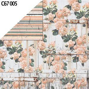 C67 005