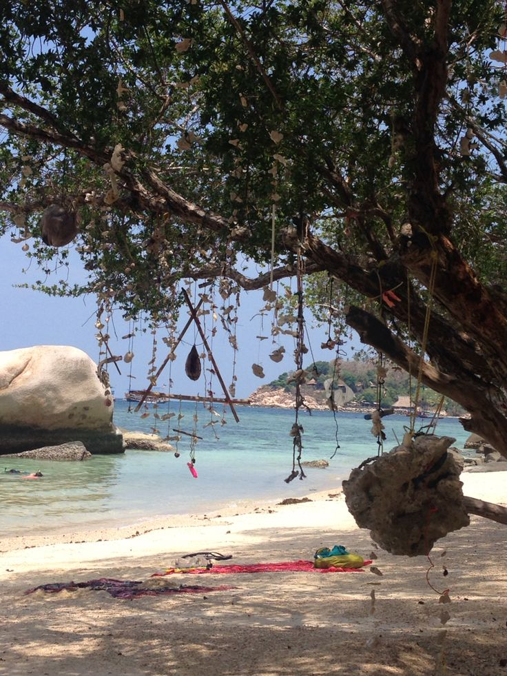 Freedom beach on Koh Tao, Thailand. Beautiful beach, decorated with dead coral on string and the coral in the water is amazing for snorkelling! #thailand #travel #coral #snorkelling #kohtao #freedombeach