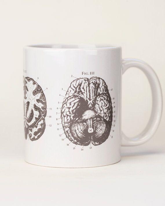 Brain Anatomy Mug | Gray White Ceramic Coffee Mug, Medical Doctor Gift, Neuroscience, Present for Smart Person, Nursing Science Biology Tea