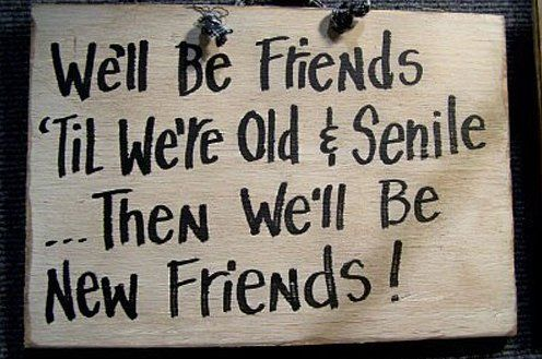 LOL – Forever Friends - MEME Funny Pictures