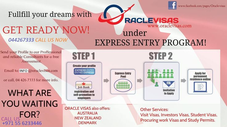 Oracle Visas under Express Entry Program Many of your questions can be answered by an experienced, trustworthy and professional immigration consultancy like OracleVisas. When you have so many questions and need answers for it, you need the guidance of a professional Immigration consultant such as OracleVisas. With more than a decade of experience and having experienced professional consultants with us, we can guide you in a better way than any other immigration consultants in the market.