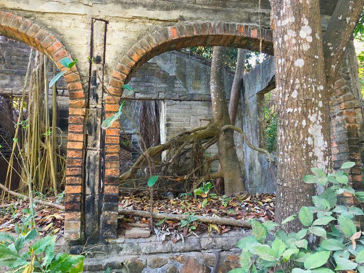 An abandoned hacienda in Sayulita, Jalisco, Mexico