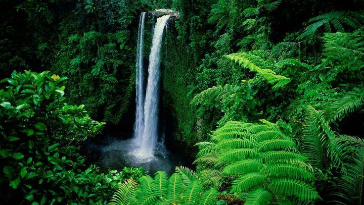 Nice Nature Waterfall 3D HD wallpaper