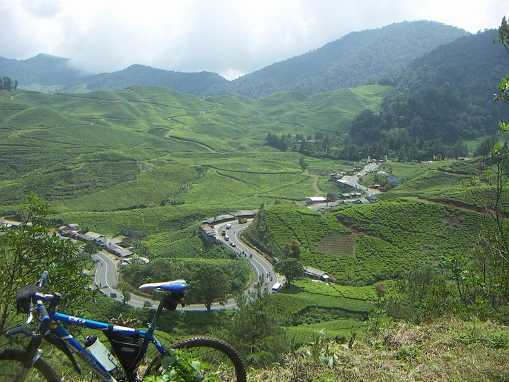 Puncak Pass. Once again. So close. Need to go! I want to ride a bike SO badly!