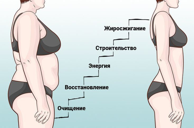Диета Лесенка Меню На 5 Дней Подробно. Диета Лесенка для похудения — минус 3-8 кг за 5 дней