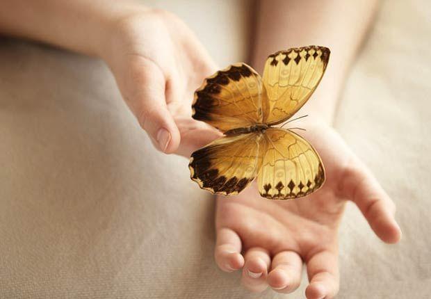 Resultado de imagen para mariposas en las manos