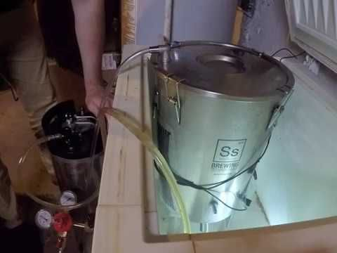 My method of doing a closed transfer with a Ss brewtech Brew Bucket and the 90 deg blow off barb #homebrewing #homebrew #beer #craftbeer #brewingbeer #beerbrewing #recipe #DIY #hops #mead #homebrewer