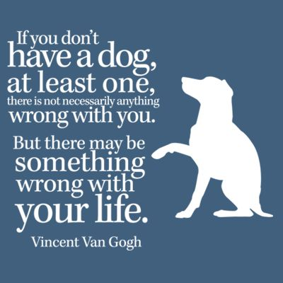 Just get a dog you can give to with full love and attention — it will be returned 10 fold.
