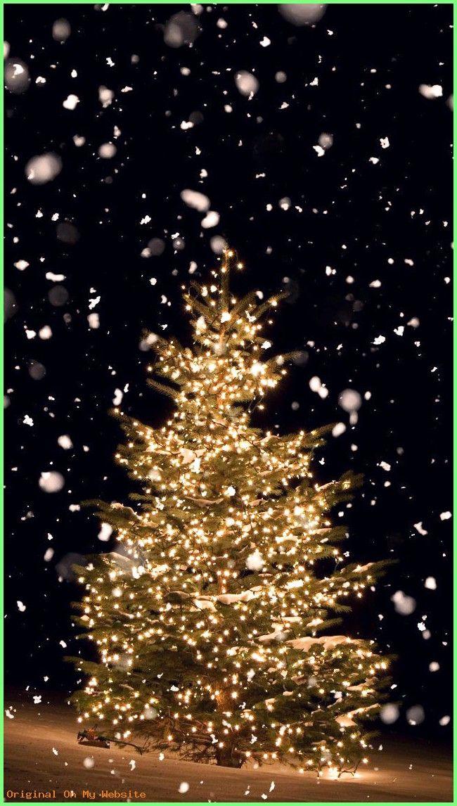 Aesthetic Cute Christmas Lights Wallpaper Sigila Mencurah Pedih
