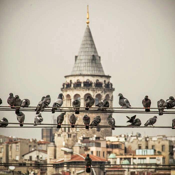 +Istanbul