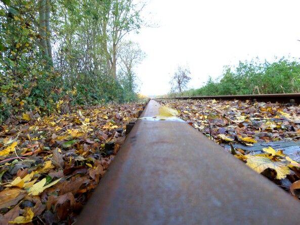 Blaadjes op de rails Zwaagdijk museumspoorlijn