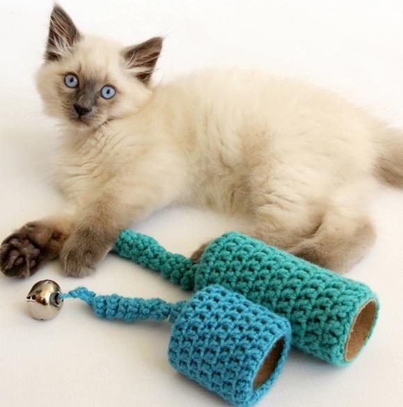 les 25 meilleures id es concernant jouets pour chats sur pinterest jouets pour chat faits maison. Black Bedroom Furniture Sets. Home Design Ideas