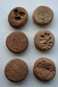 stamped - press different leaves or flowers the kids find into clay