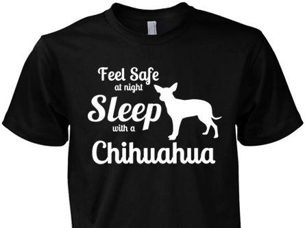 Feel Safe Sleep with a Chihuahua
