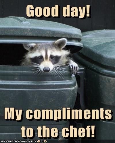 e0313c86675119288684a7bcda819d96 the chef compliment 86 best caught it! images on pinterest how to get rid, animals,Compliments To The Chef Meme