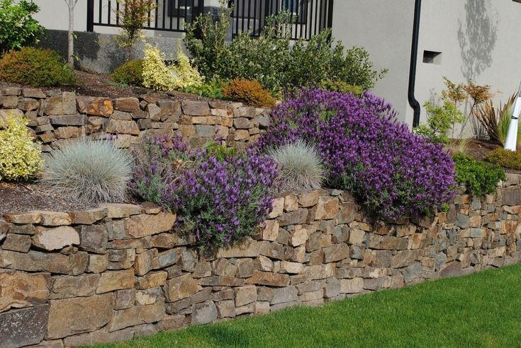 17 best images about retaining wall planting on pinterest