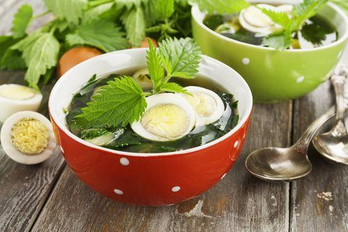 Špenát i polévka z kopřivy mohou chutnat výtečně