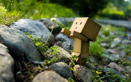 Amazon boxes + imagination = Box Life - Family Sponge -