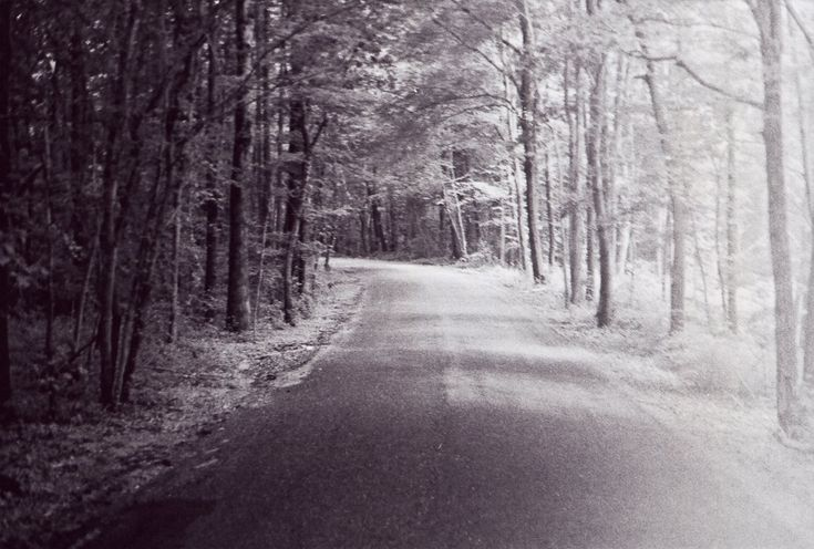 The Goatman–Or His Story, at Least–Still Haunts Prince George's County